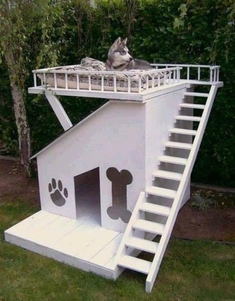 kreatív kutyaház-9